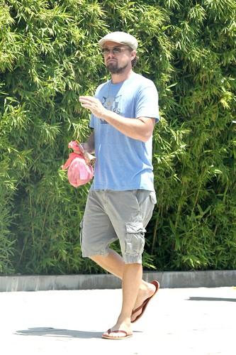 Leonardo DiCaprio bermude