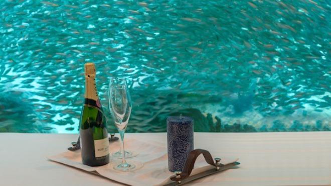 Nova zabava za one koji vole luksuz: SPAVANJE SA...