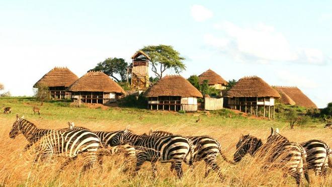 Ovog leta biramo luksuzan safari kao svoju destinaciju za odmor