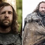 The Hound (Rory McCann)
